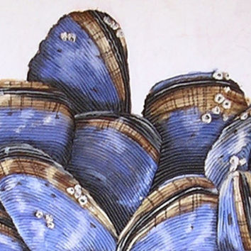 Mussels II String Art - Blue Nautical Beach Decor Seashell Wall Hanging
