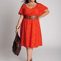 Plus Size Dahlia Dress by IGIGI