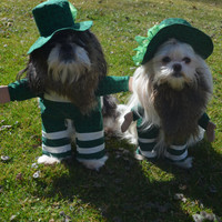 St Patty's Day St. Patrick's Day Leprachaun Irish Costume with Hat for your Pet/Dog