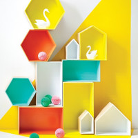 Wall hung/free standing hexagon display box PRE ORDER FOR APRIL