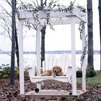 Uwharrie Fanback and Arbor Swing Set | Wayfair