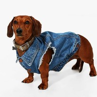 Reggie Dog Denim Jacket | Boohoo