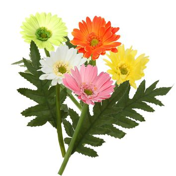 1pc Multi Colors Real Touched Flower Daisy Vivid Flower with Leave Simulation Gerbera Home Livingroom Design Bouquet Decors E#CH