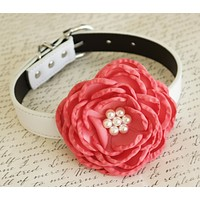 Coral Flower dog collar, Wedding dog collar, Pet wedding accessory