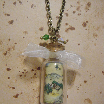 Disney's Winnie the Pooh - Map of 100 Acre Wood Vial Necklace