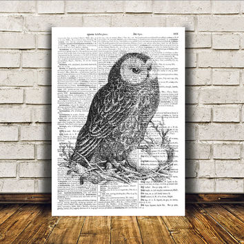 Owl poster Modern decor Bird art Dictionary print RTA325