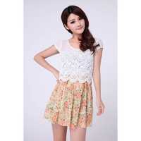 Floral Printed Lacework Chiffon Dress