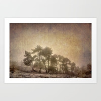 the curved tree Art Print by Guido Montañés