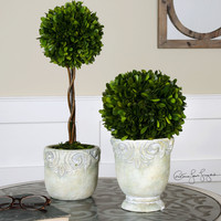 Uttermost Preserved Boxwood Ball Topiaries S/2