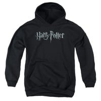 Harry Potter - Logo Youth Pull Over Hoodie