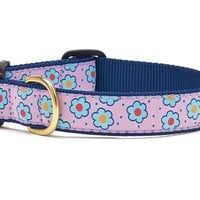 Up Country Flower Field Dog Collar
