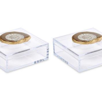 Acrylic Pill Boxes w/ Ammonite, Set of 2, Acrylic / Lucite, Boxes