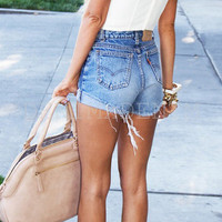 Denim High Waisted Shorts Distressed Shorts Ripped Levi's Destroyed Hipster Grunge Shorts Wrangler Vintage