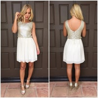 Ice Ice Baby Holiday Babydoll Dress