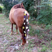 Equine Flowered Tail Decoration - Pansy Daisy Dogwood Rose Flower Tail Ornament for Horses - Equine Costume - Horse Tail Drape