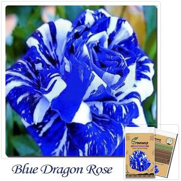 Flower Bonsai seeds 100 pcs Blue Dragon Rose Seeds Rare Color DIY Yard or Potted flower Home Garden! Free Shipping!