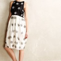 Snowfall Dress by Rachel Antonoff Black Motif