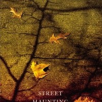 Street Haunting and Other Essays : Virginia Woolf : 9780099589778