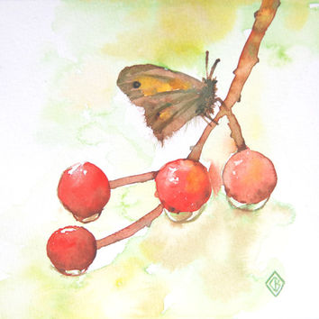Moth on Wet Cherries - 6x6 Original Watercolor Painting - nature art, butterfly