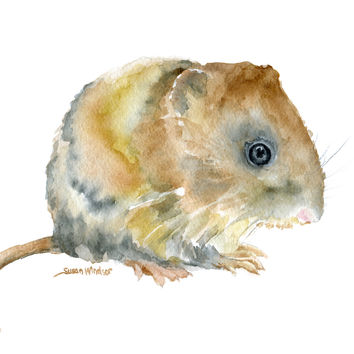 Vole Watercolor