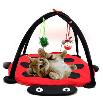 DCC3W Pet Cat Bed Kitten Toys Mobile Activity Playing Bed Toys Cat Bed Pad Blanket House Pet Furniture Cat Tent Toys Hanging Ball