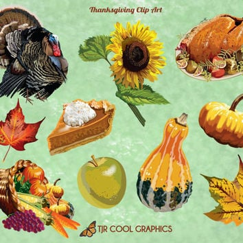 Clip Art Thanksgiving, Digital Clip Art, PNG, Printable, Turkey, Pumpkin Pie, Fall Leaves, Cornucopia, Sunflower