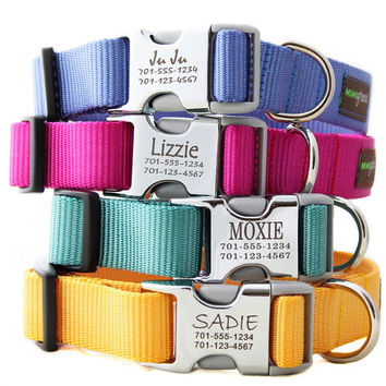 Metal Engraved Buckle Dog Collar - Personalized with 18 Webbing Colors to Choose From