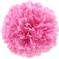 "10"" Light Pink Hanging Mum Ball 