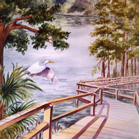 ACEO watercolor print, Riverwalk 656 Florida boardwalk nature park watercolorsNmore