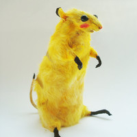 Pikachu, Mouse taxidermy