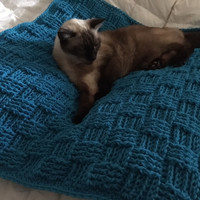 Crochet Pet Blanket in the Basket Weave Design. Dog or Cat Afghan Animal blanket Turquoise. Made to Order