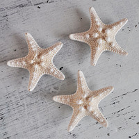 Beach Magnets - Starfish Magnet - Set of 3 - nautical magnets - beach decor - cute magnets - beach decor - fridge magnets - hawaii magnets