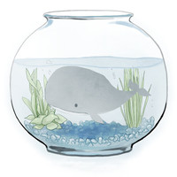 Whale in a Fishbowl  8 x 10 Matte Art Print by CrownedMoon on Etsy
