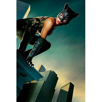Catwoman Halle Berry Movie 11inx17in poster