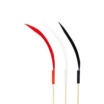 Quill Feather Pick Feather Skewer Food Picks Sticks  6 inch  Perfect for Serving Appetizers and Cocktail Garnishes  Natural Color  500ct  Restaurantware