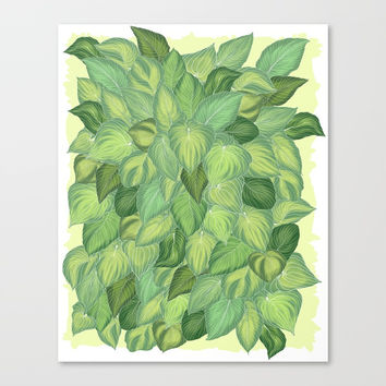 Citric Hostas Canvas Print by Camila Quintana S