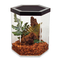 Repitat 2 - Reptile Habitat - Bed Bath & Beyond