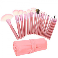 22pcs  Cosmetic Makeup Brush Set with Bag Pink