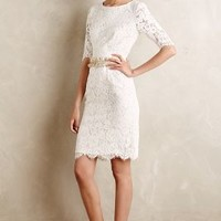 Agnella Laced Sheath by Erin Fetherston Ivory
