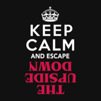 Keep Calm and Escape the Upside Down: Stranger Things