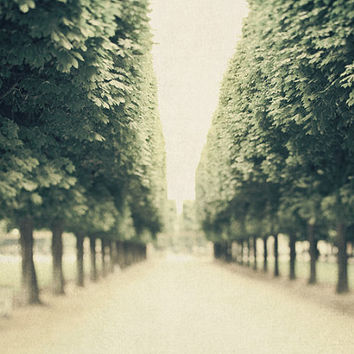 Paris Print, Luxembourg Garden, Row of Trees, Paris Photography, Spring Emerald Green, Nature - Parks and Recreation