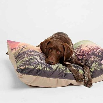Shannon Clark For DENY Moon Magic Pet Bed