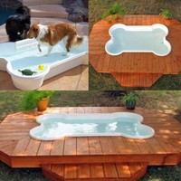 Bone Shaped Play Pool for Dogs