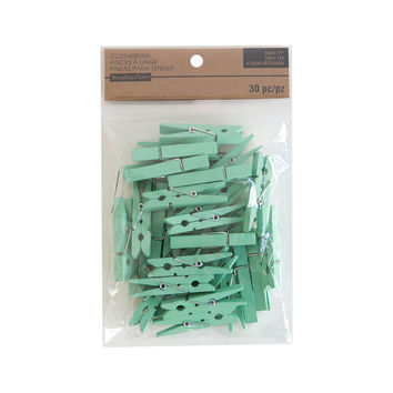 Craft It™ Medium Mint Clothespins By Recollections™
