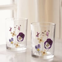 Pressed Flower Glass - Set of 2 | Urban Outfitters