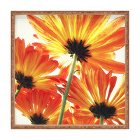 Shannon Clark Orange Daisies Square Tray
