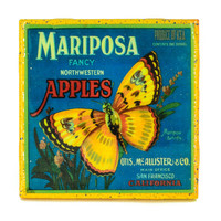 Handmade Coaster Mariposa Brand - Vintage Citrus Crate Label - Handmade Recycled Tile Coaster
