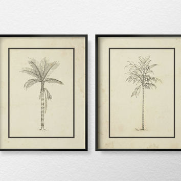 Palm Tree Illustration, Coastal Decor Set of 2, Coastal Bathroom Decor, Palm Tree Art, Beach House Decor, Palm Tree Print, Tropical Art