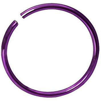 "20g Surgical Steel Titanium Anodized Purple 5/16"" Small Nose Ring Hoop - Nose Piercing Jewelry"