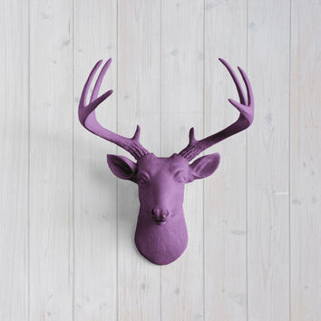 The MINI Virginia Violet Faux Taxidermy Resin Deer Head Wall Mount | Violet Stag w/ Colored Antlers